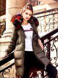 雪萊爾服飾品牌女裝寶萊國際羽絨服折扣供應|女裝供應
