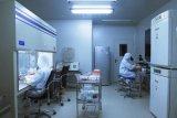 東營淨化實驗室淨化工程裝修