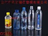 专业对外设计加工矿泉水瓶模具