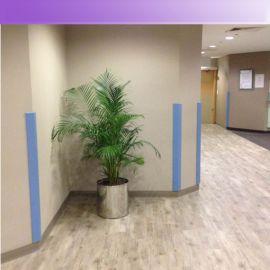 【凯茂】防撞PVC系列厂家低价销售走廊护墙板/护角