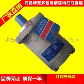 合肥长源液压齿轮泵CBN-F316-扁右法兰