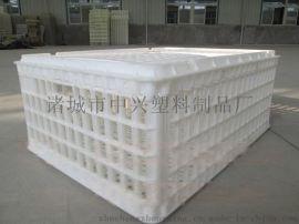塑料鸡笼供应商 农场用塑料鸡笼子批发 成鸡周转筐厂家