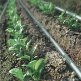 廣西柳州果樹專用Φ16×0.6、0.8、1.0mm滴灌管價格 果木PE灌溉管