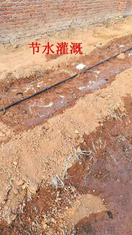河南省安陽市農業節水設備滴灌灌溉施肥裝置微噴帶
