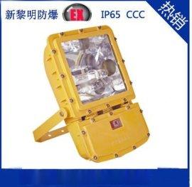 供应海洋王BFC8110防爆泛光灯,大功率防爆泛光灯