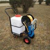 厂家供应蓄电池农用喷雾器小型推车式果园打药机
