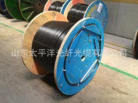 供应【太平洋】GYTY533 光纤光缆 12芯光缆 太平洋光缆