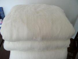 桑蚕丝棉片