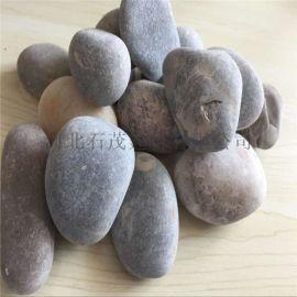 园林鹅卵石 鹅卵石滤料 天然铺路鹅卵石