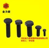 高强度紧固件 金力豪专业高强度标准件生产厂家