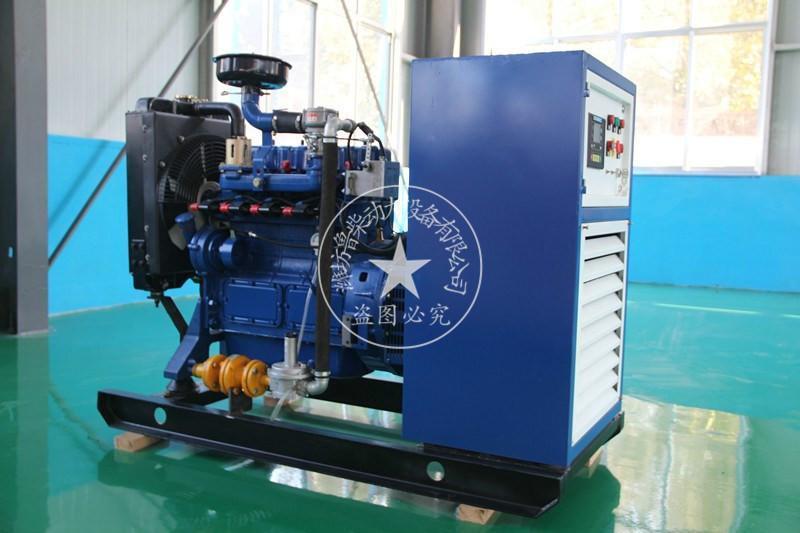 廠家直銷10KW天然氣沼氣發電機組家庭小型沼氣機工廠廢氣轉電能