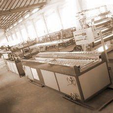 木塑板生产线(LS-4)