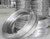 供應201不鏽鋼彈簧線/不鏽鋼中硬線,螺絲線/現貨批發