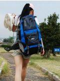 艾王/aione 专业户外登山包双肩背包 40L超大容量旅行包