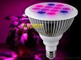 单光谱植物灯优质原料