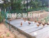 供應阜陽綠色養雞專用鐵網生產廠家