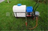 供应蔬菜大棚专用手推式电动喷雾器