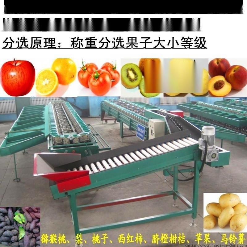 猕猴桃重量分选机毛桃选果机