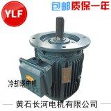 YSCL冷卻塔風機專用電機