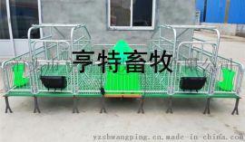 安徽养猪设备母猪复合产床 猪用产床复合漏粪板价格