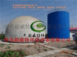 天然气提纯项目专用双膜气柜拼装罐独立气柜
