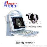兽用B超 宠物医院 养殖场 繁殖业 畜牧业 专用B超机 B超扫描仪 宠物医疗