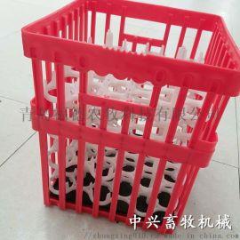 塑料大种蛋箱 种蛋周转箱 鸡蛋筐鸭蛋箱批发