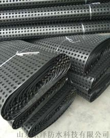 厂家直销建筑防潮防水材料-排水板