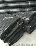 廠家直銷建築防潮防水材料-排水板