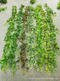 仿真藤条藤蔓吊顶装饰绿叶常青藤客厅管道缠绕葡萄叶植物墙面田园