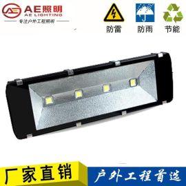 AE照明AE-TGD-01户外亮化,球场照明,招牌投光灯,展会投光灯,庭院照明LED投光灯户外防水灯100W15