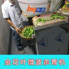广西防城港微波杀青机厂家直销叶子烘干一机两用金花茶微波杀青机