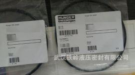 武汉厂家直销进口HUNGER静密封 POR O-Ring密封环 密封件