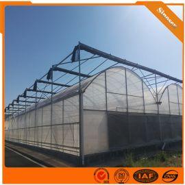 连栋温室大棚 连栋温室大棚建设 承建连栋温室大棚