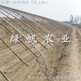 供應壽光綠帆農業 鋼架竹木PVC日光溫室 蔬菜大棚