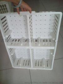 鸡苗运输筐 塑料运输筐厂家批发 运输塑料鸡笼子