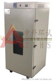 中科环试品牌充氮烘箱/充氮烤箱/充氮恒温干燥箱