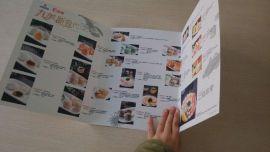 广州印刷厂 展会宣传资料 文办公用品定制 记事本订做  手册印刷