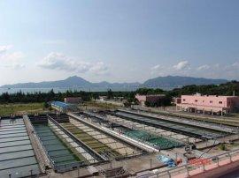 山东复合防腐防水涂料厂家