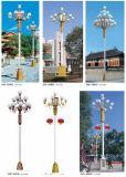 隆昌中华灯ZHD-08401 LED景观路灯