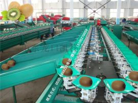 猕猴桃选果机 分级机 分选机 重量分选机 重量分级机 分拣机