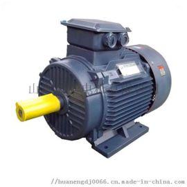 风机专用电机生产厂家YE2-110KW4  效电机