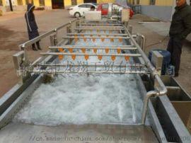 果蔬清洗机 不锈钢清洗机 全自动清洗流水线
