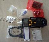 華瑞PGM基本型VOC氣體檢測儀7300型號價格