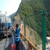 天津市綠色浸塑橋樑防拋網焊接高速公路護欄網廠家