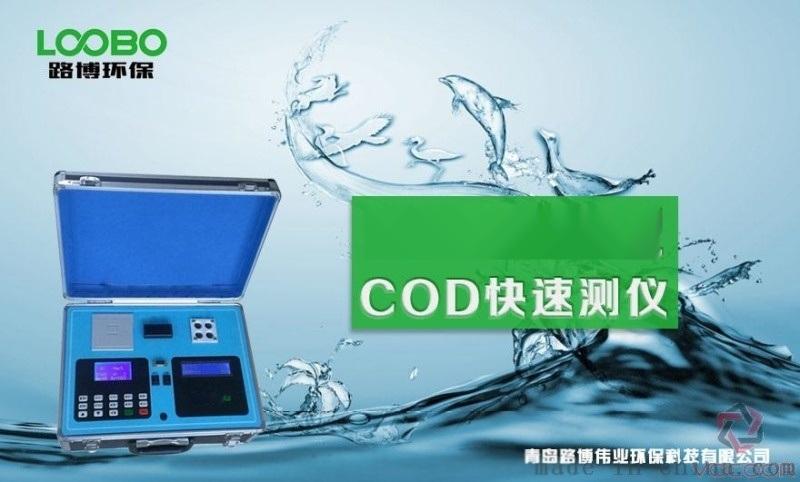 便携式COD检测仪的品牌 快速催化法