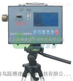 直读式粉尘浓度测量仪,现场直测