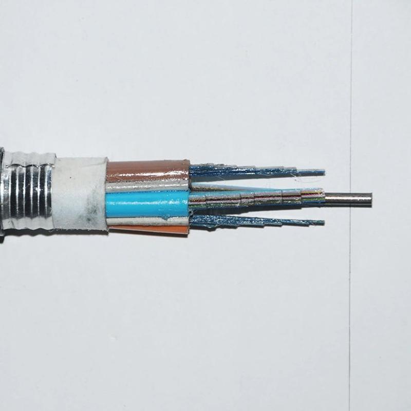 供应太平洋 GYDTZS-48B1.3  光纤带 阻燃 室外光缆 厂家直销