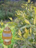 樟樹油萬億香料植物萃取精油