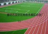 地諾寶塑膠跑道球場專業施工